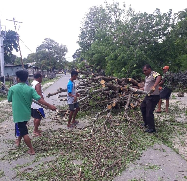 Pohon Tumbang Halangi Jalan Raya, Bhabinkamtibmas Bantu Warga Evakuasi